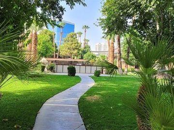 350 E Desert Inn Road #F204, Las Vegas, NV, 89109,