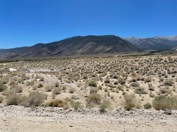 None Lot 40B Mtn Water Ranch, Other, NV, 90010,