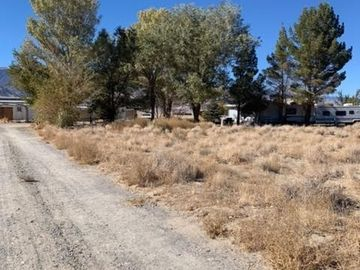 24 Palmetto, Other, NV, 89010,