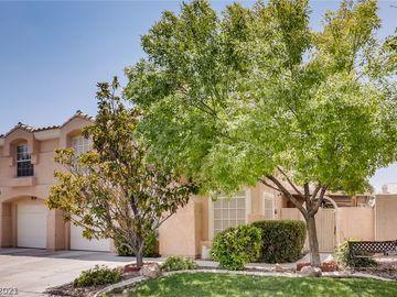 8445 Blue Island Avenue, Las Vegas, NV, 89129,