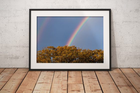Double Rainbow Photography Print In Black Frame