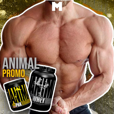 Animal promo - 1 pack