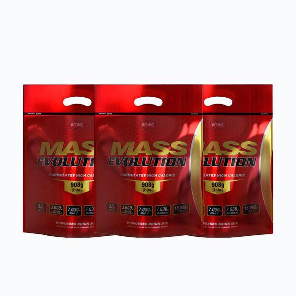 Mass evolution 2lb 2x3