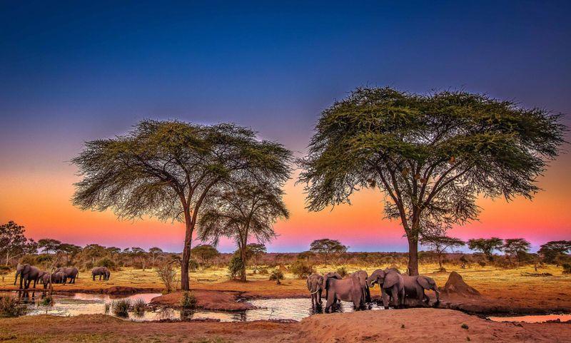 fototur_ekskursionnyy_tur_ekspeditsiya_bolshoe_afrikanskoe_puteshestvie