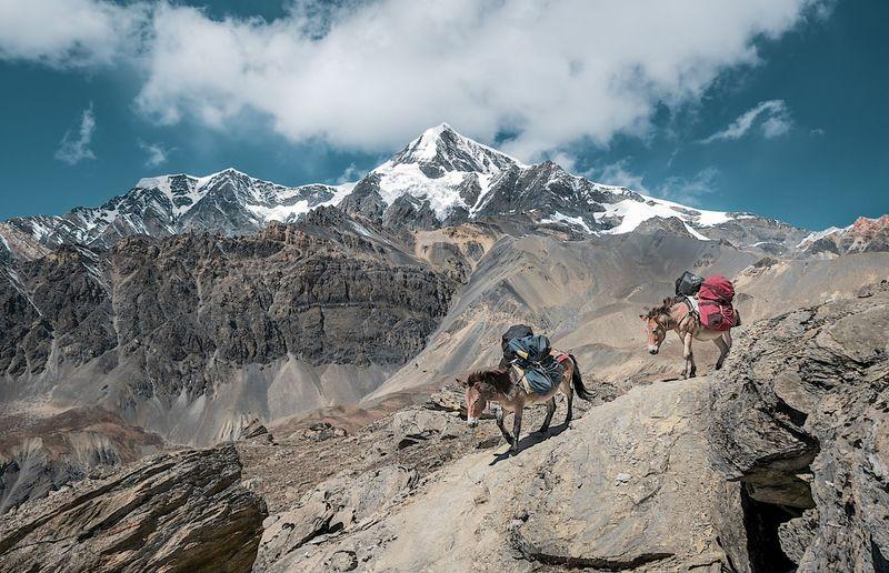 trekking_tur_ekskursionnyy_tur_novogodniy_trekking_k_bazovomu_lageryu_annapurny