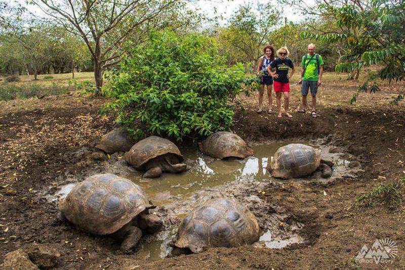 ru_trekking_v_ekvadore_galapagosskie_ostrova