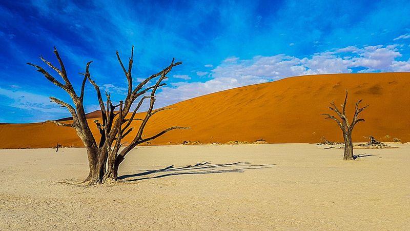 namibiya_i_yuar_ot_vindkhuka_do_keyp_tauna_avto_tur_trekking_tur_fototur_ekskursionnyy_tur_dzhip_tur_ekspeditsiya