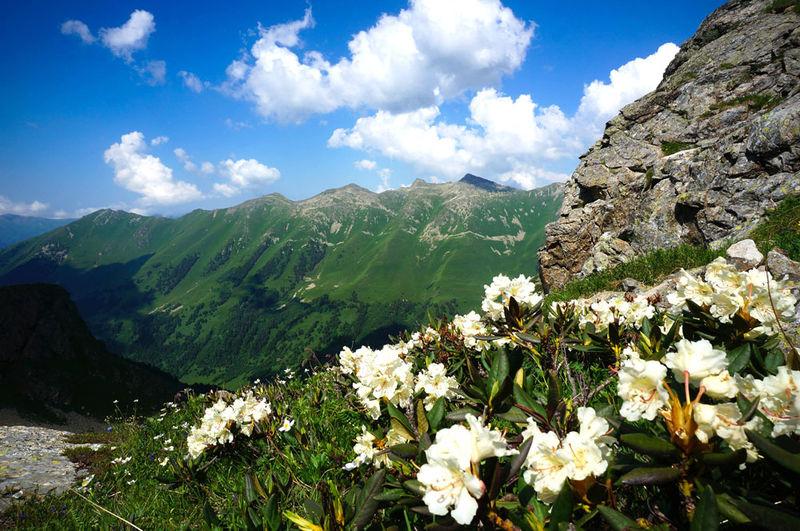 trekking_v_arkhyze_komfort-tur_s_gostinitsey_mineralovodskiy_stavropolskiy_kray_rossiya_rossiya