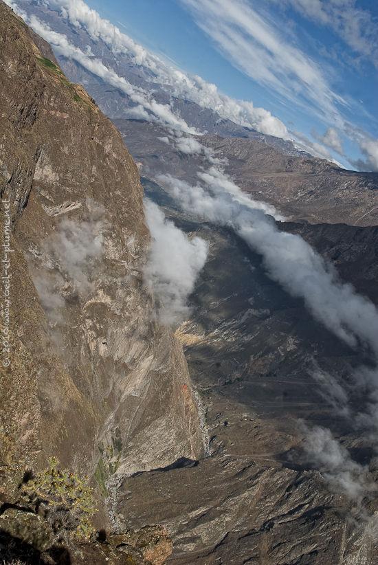 Pérou Colca 2009