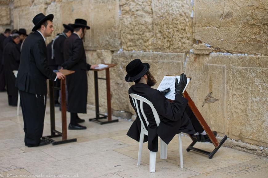 Jérusalem 2011-12