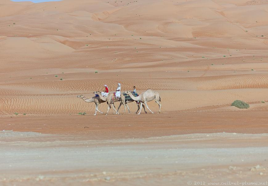 Oman Desert 2012