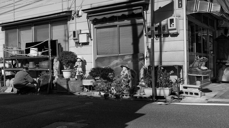 Matsumoto 2013