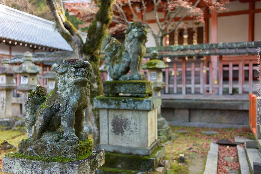 Nara 2013