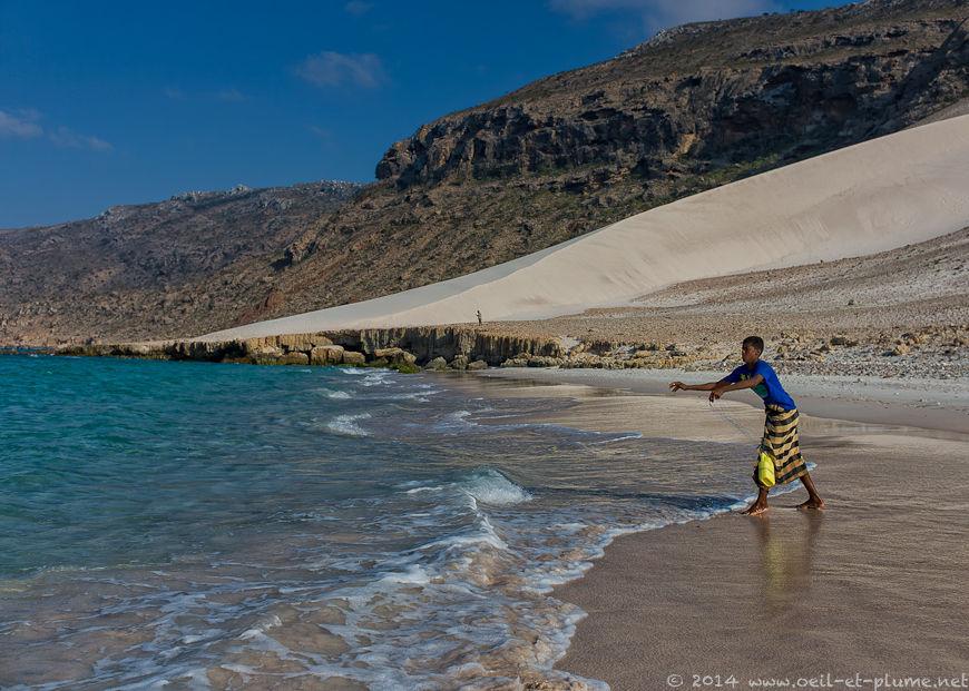 Socotra 2014