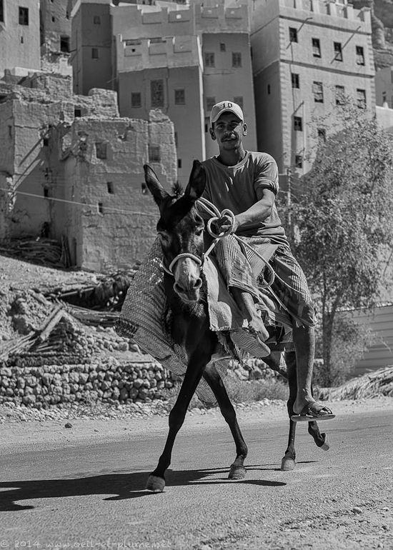 Wadi Doan 2014