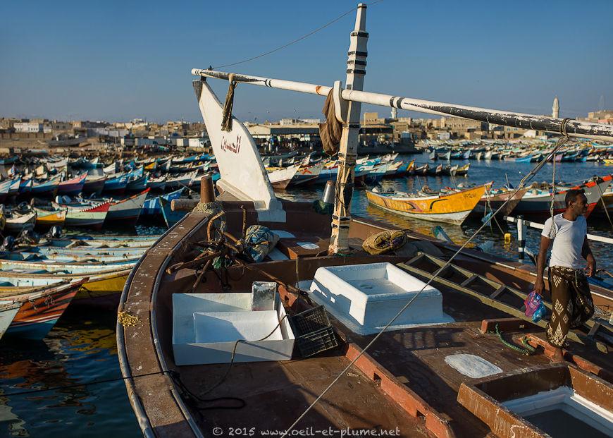 Coastal Hadramout 2015
