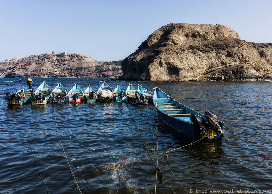 Aden 2014-2015
