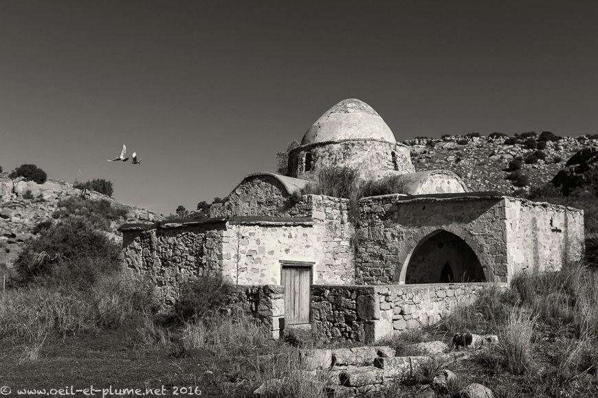 Cyprus 2016
