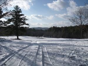 Winter tales and Daytona dreams