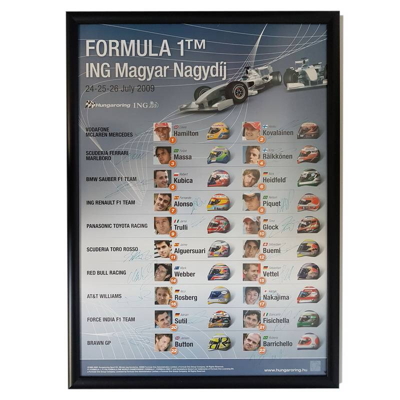 Product image for F1 | Hungarian Grand Prix - 2009 - Budapest | original poster | signed entire 2009 grid
